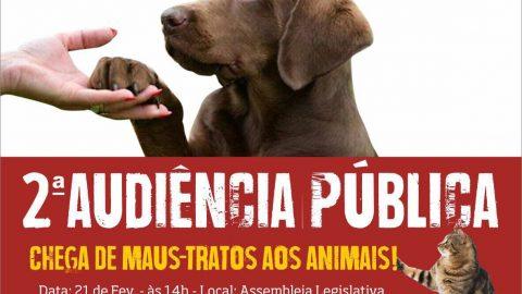 Deputado Wellington do Curso realizará Audiência Pública em defesa dos animais