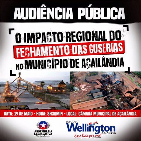 Deputado Wellington convida população para audiência que discutirá sobre o fechamento das guserias de Açailândia