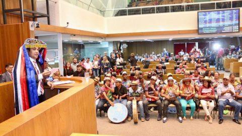 """""""A cultura do Maranhão reflete a força do nosso povo"""", diz deputado Wellington durante sessão solene em homenagem aos 120 anos do Boi da Maioba"""