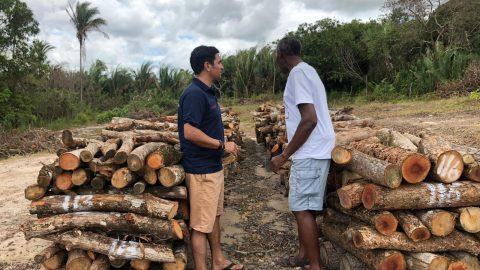 """""""Crimes ambientais são cometidos com a permissão de Flávio Dino"""", denuncia deputado Wellington sobre construção de um porto no Cajueiro"""
