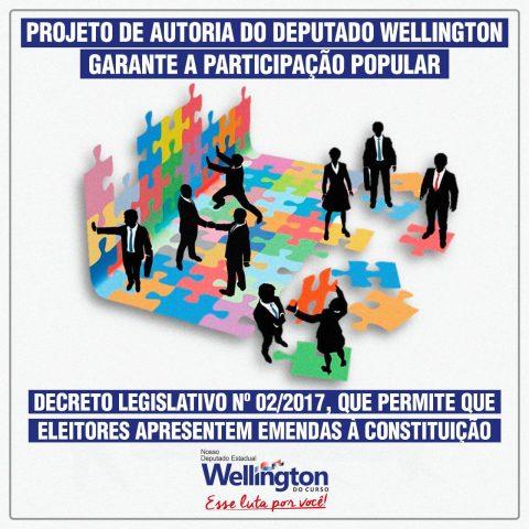 Deputado Wellington apresenta projeto para garantir a participação popular