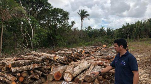 Wellington do Curso denuncia prática de crimes ambientais em São Luís cometidos com a permissão Flávio Dino